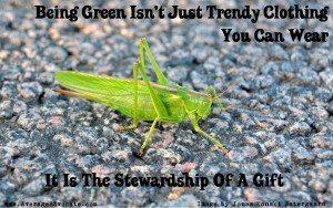 Being Green Grasshopper Image By Jonas Konski Østergaard Graphic by www.AverageAdvocate.com