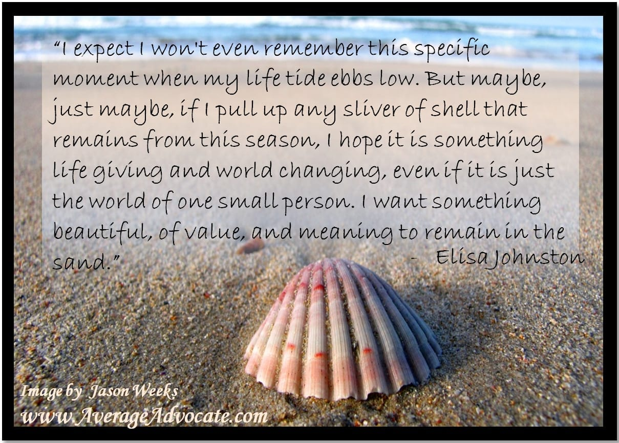 Seashell Beach Sand World Change Meaning in the Moment AverageAdvocate Elisa Johnston