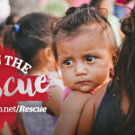 How To Know If You Are A Baby-Lover & Operation Baby Rescue